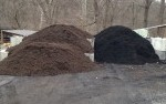 Youu0027ll Only Find High Quality Mulches At Bluestone Gardens. Choose From Our  Natural Brown, Black, Or Mushroom Mulch. We Also Stock Cedar And Pine Bark  ...